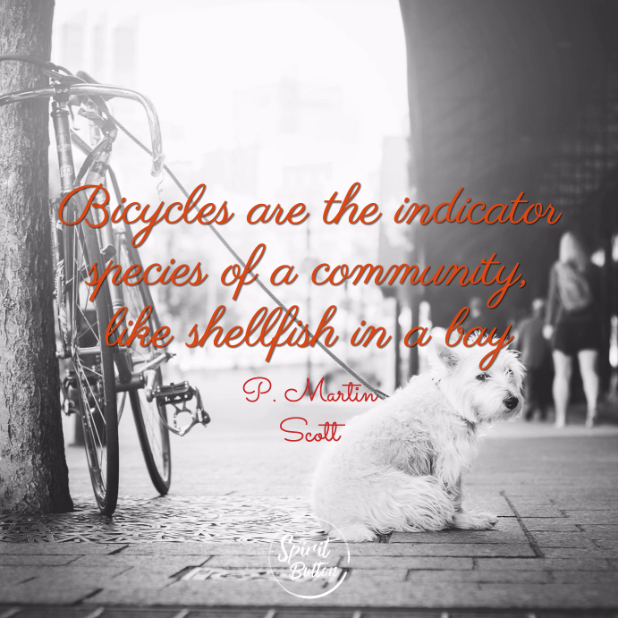 Bicycles are the indicator species of a community like shellfish in a bay