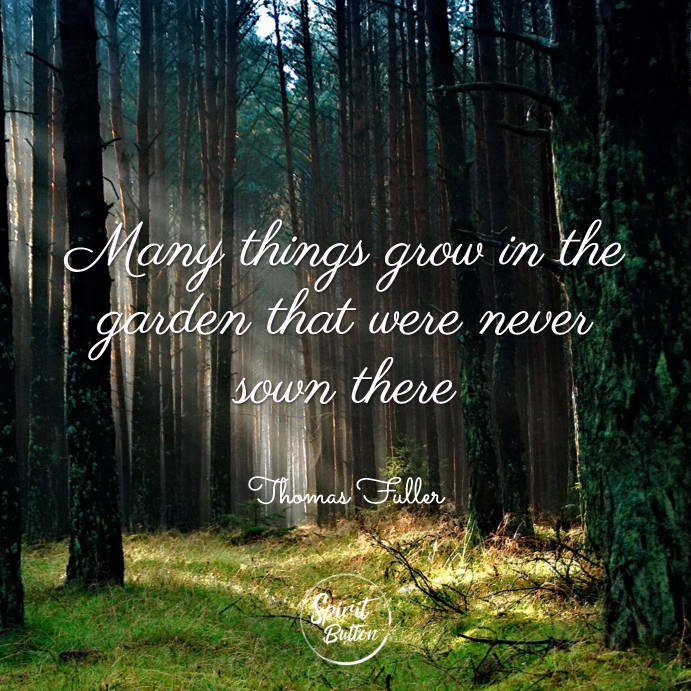 Many things grow in the garden that were never sown there. thomas fuller