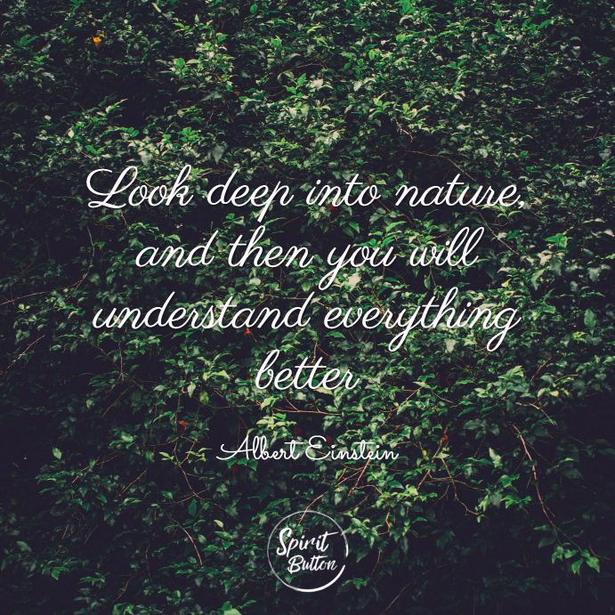 Look Deep Into Nature And Then You Will Understand Everything Better.  Albert Einstein 1