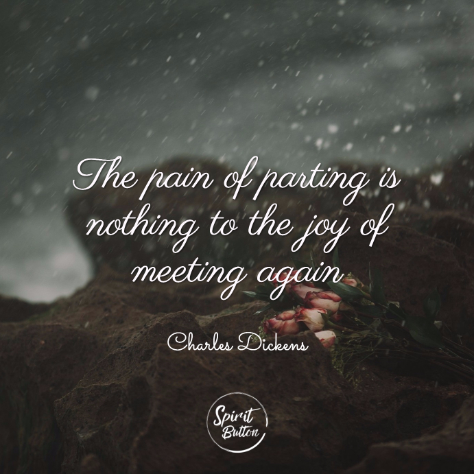 The pain of parting is nothing to the joy of meeting again. charles dickens