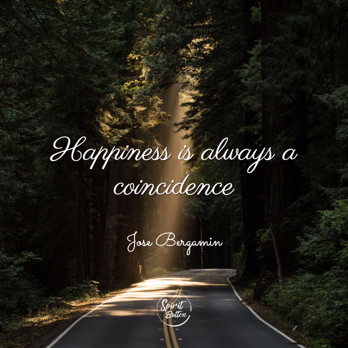 Happiness is always a coincidence. jose bergamin