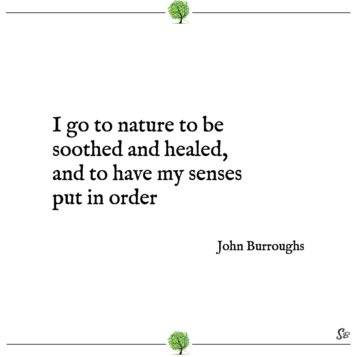 I go to nature to be soothed and healed, and to have my senses put in order john burroughs