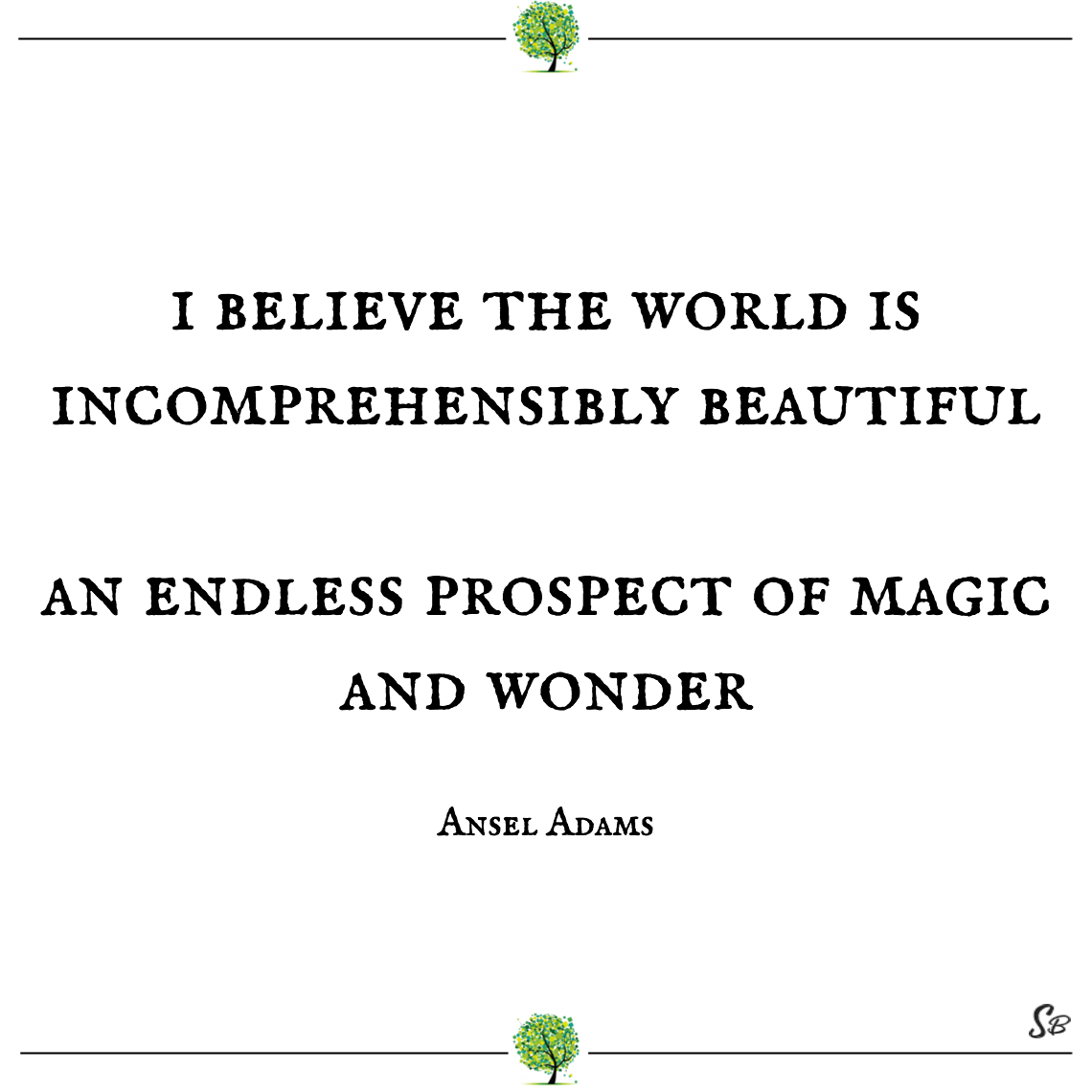 I believe the world is incomprehensibly beautiful an endless prospect of magic and wonder ansel adams nature quotes
