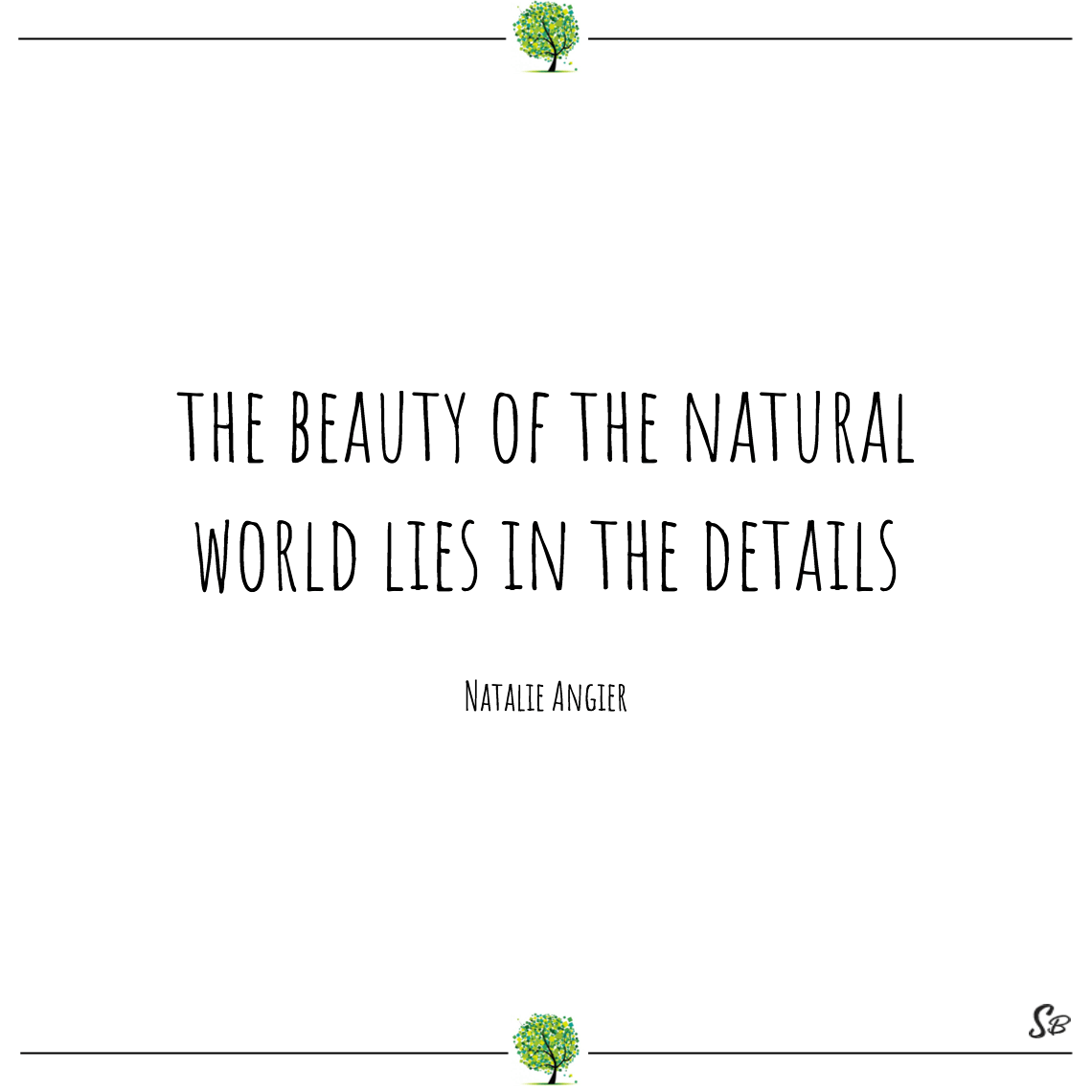 The beauty of the natural world lies in the details natalie angier