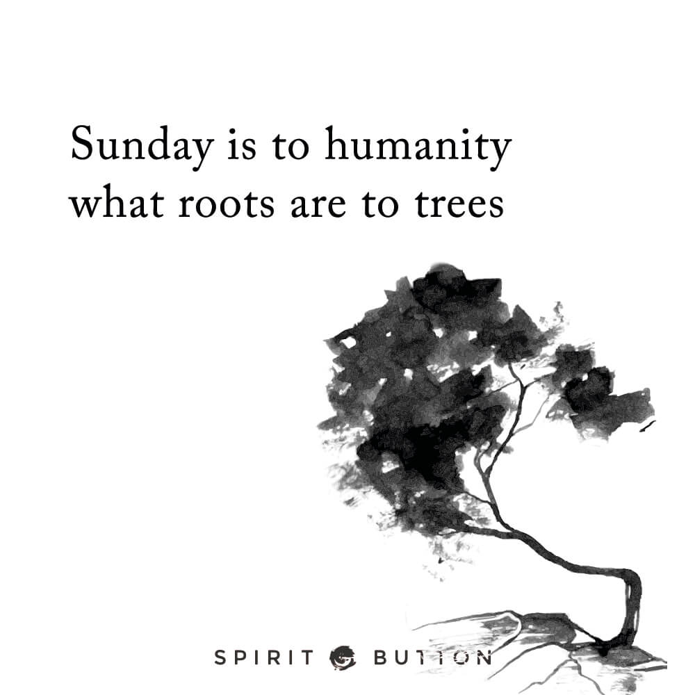 Sunday is to humanity what roots are to trees