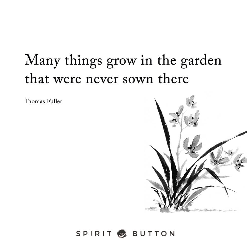 Many things grow in the garden that were never sown there. – thomas fuller